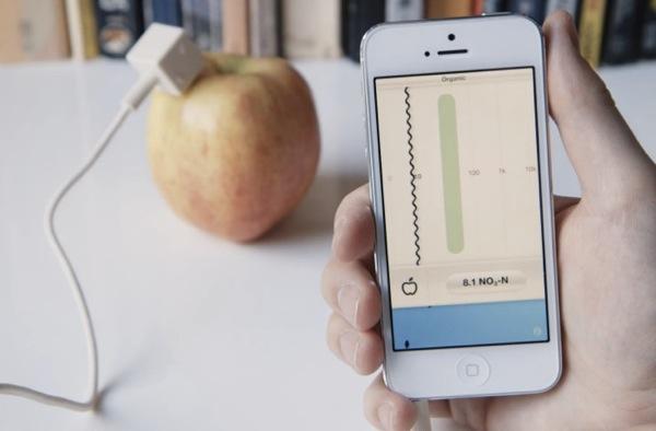 lapka iphone sensor