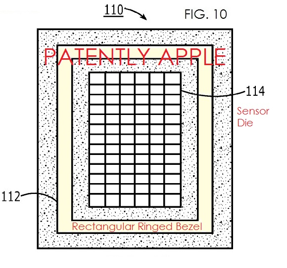 biometric sensor-Apple