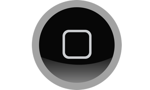 ring-home-button