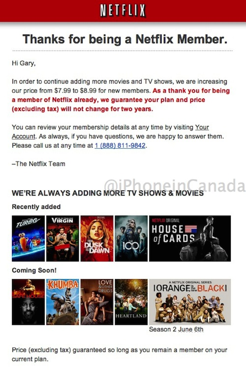 Netflix 8 99 price