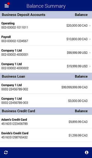 Rbc mobile business