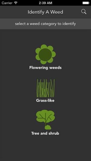 Weed spotter edmonton