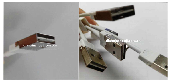 LightningCable Reversible USB