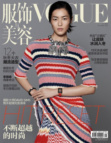 Cover Nov 2014 for meng 700x902