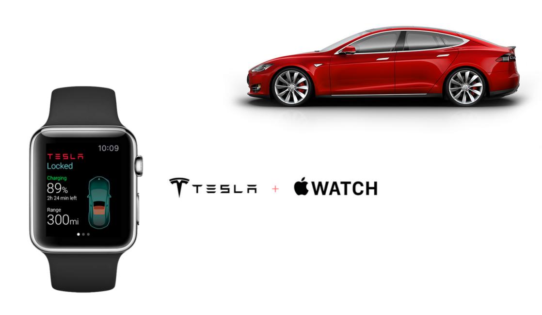 Tesla_AppleWatch_ELEKSlabs_12
