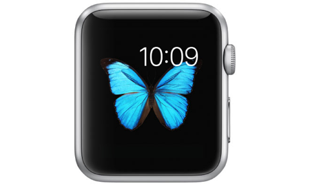 10611 2950 apple watch whatever l