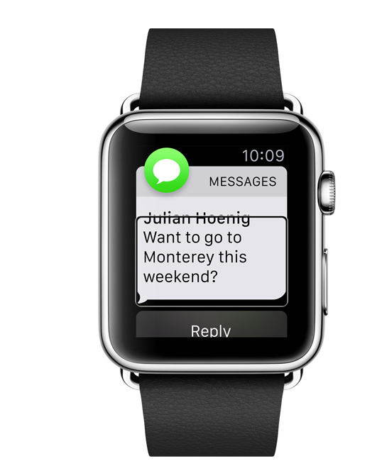 Apple watch accessibility