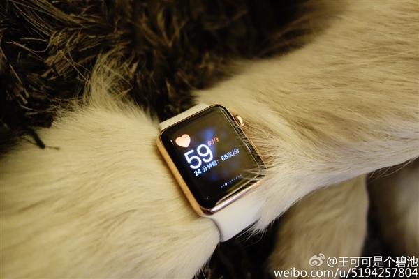 Wang si cong dog apple watch4