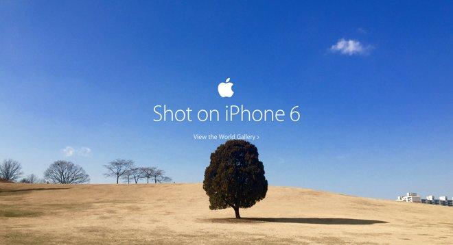 13672 8646 Apple World Gallery l