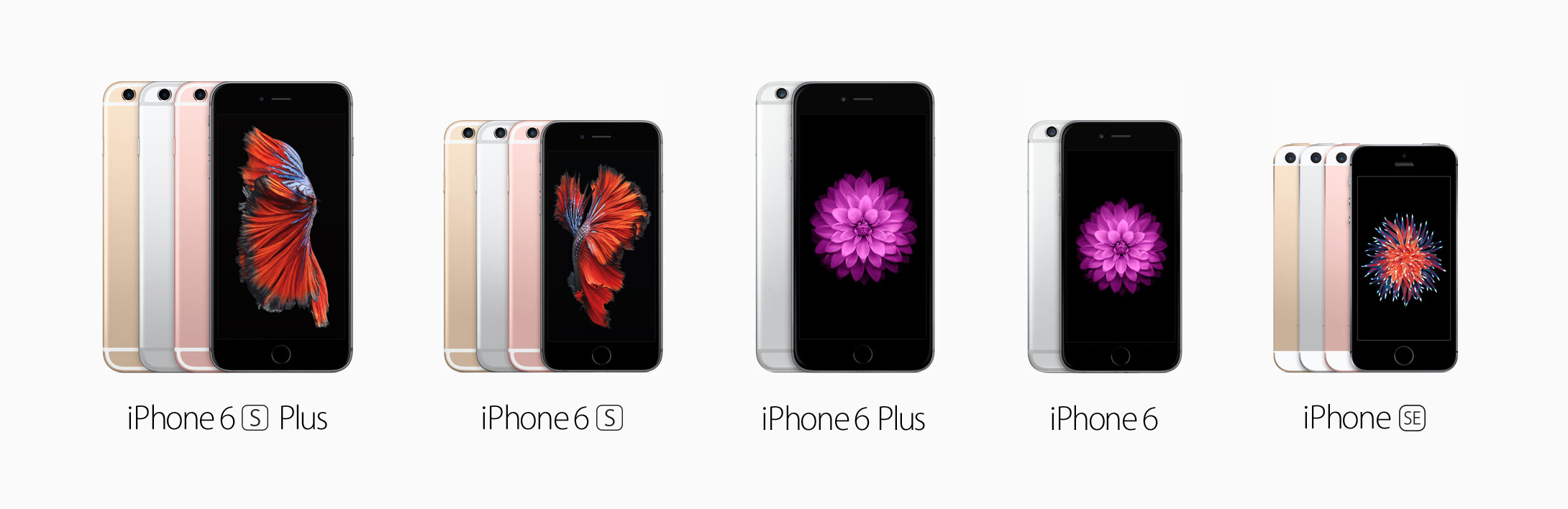 2016_iphone_lineup