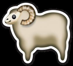 Sheep 250x224
