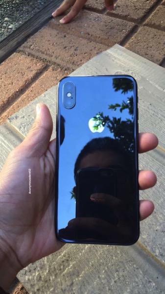 Iphone x wild 2