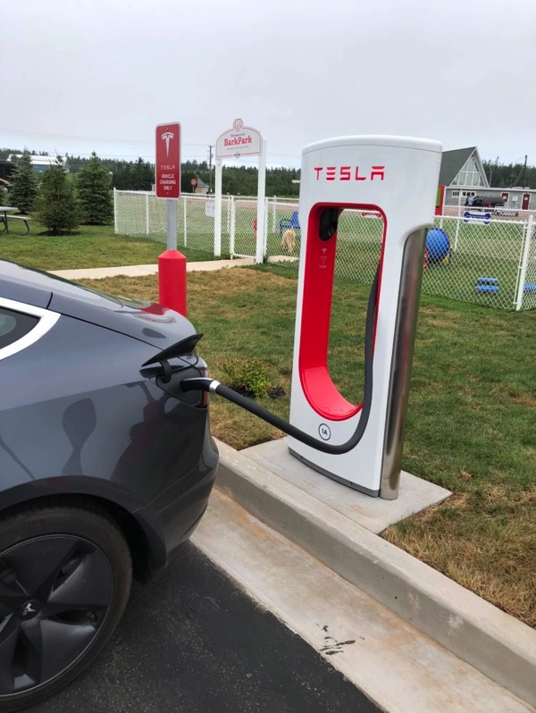 Tesla aulac new brunswick