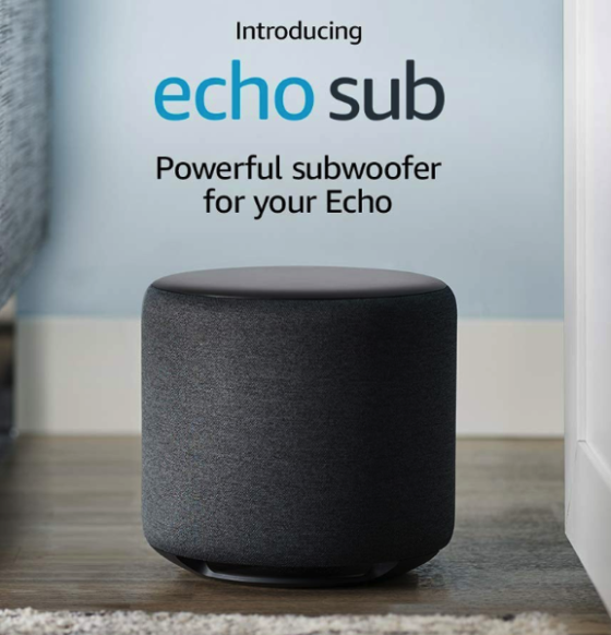Echo sub new