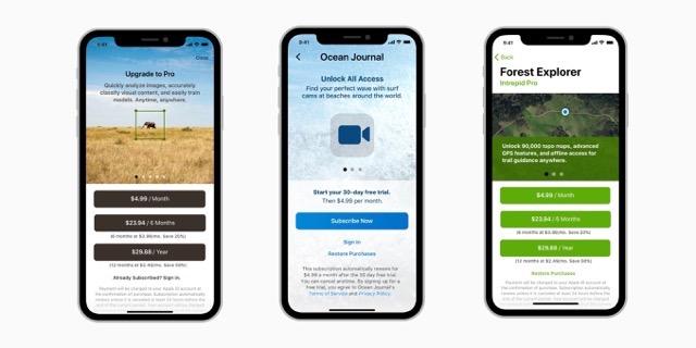 Apple subscription documentation
