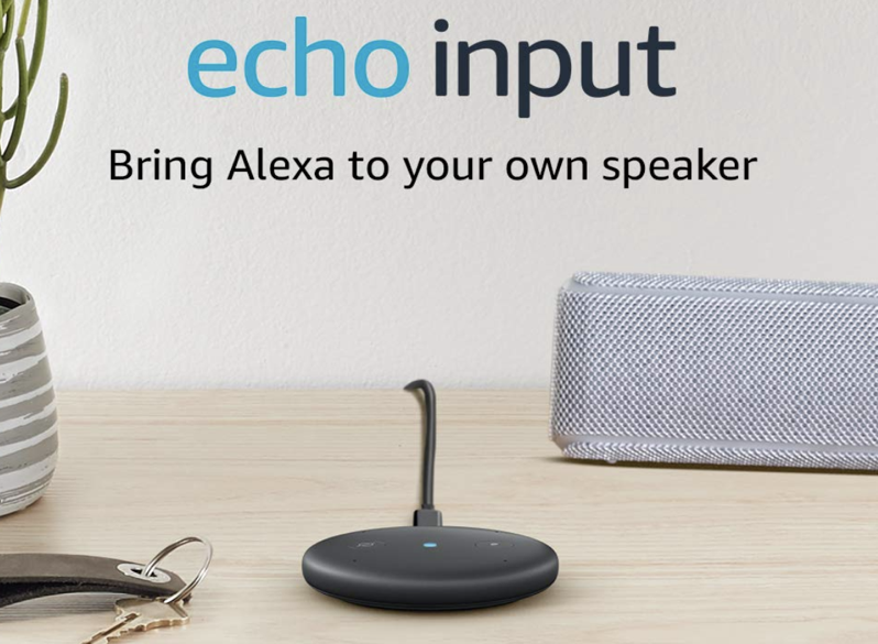 Echo input canada
