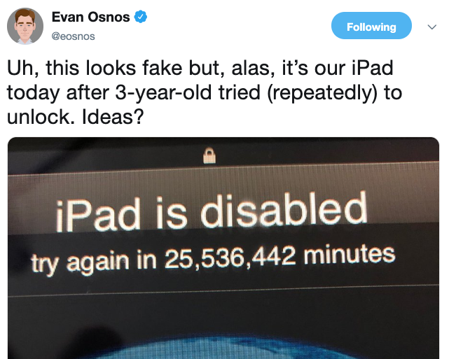 Ipad disabled