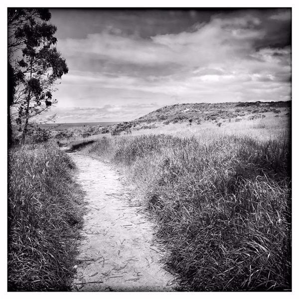 Apple Photographer Rachael Short Wandering Path Monastery Beach 05162019 big jpg large 2x