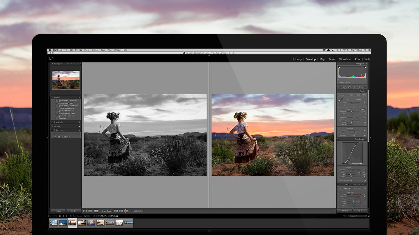Adobe Photoshop Lightroom Classic CC 2019 v8.2.1.10 (Pre