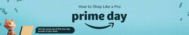 How to shop like a pro prime day