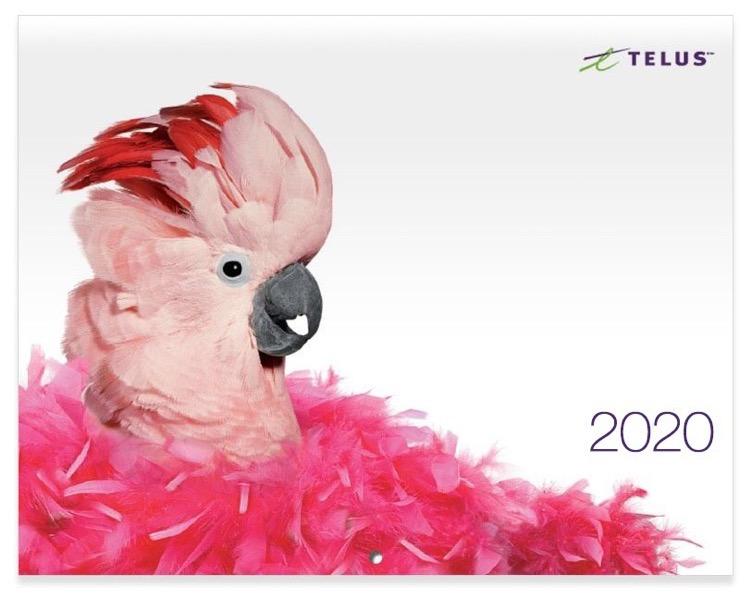 2020 telus calendar