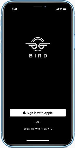 Sign in screen iphone 2x