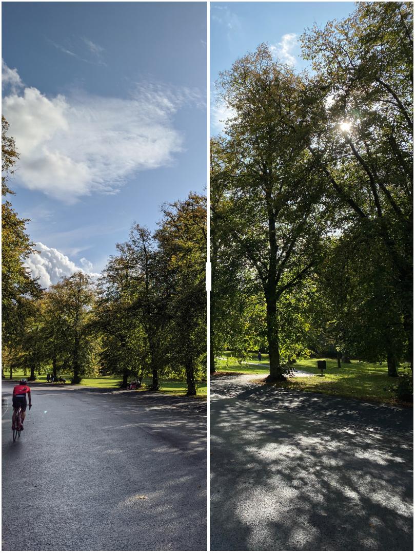 Pixel 4 vs iphone 11 pro camera
