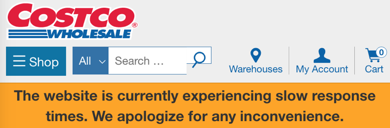 Costco website error