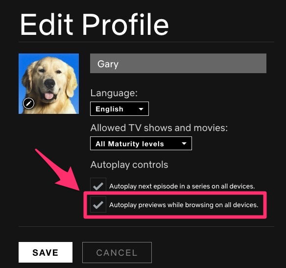 Netflix autoplay disable