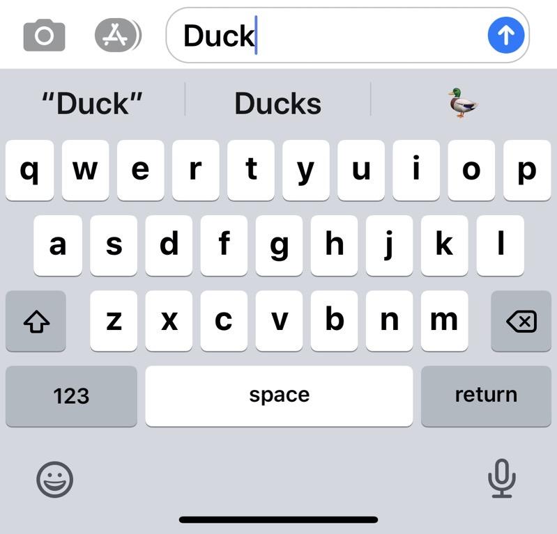ios duck