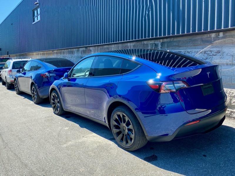 Tesla model y blue oakville