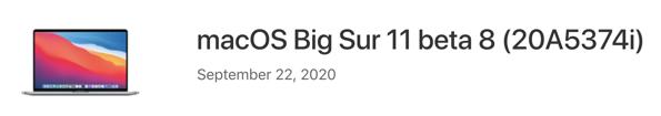 MacOS big sur 11 beta 8