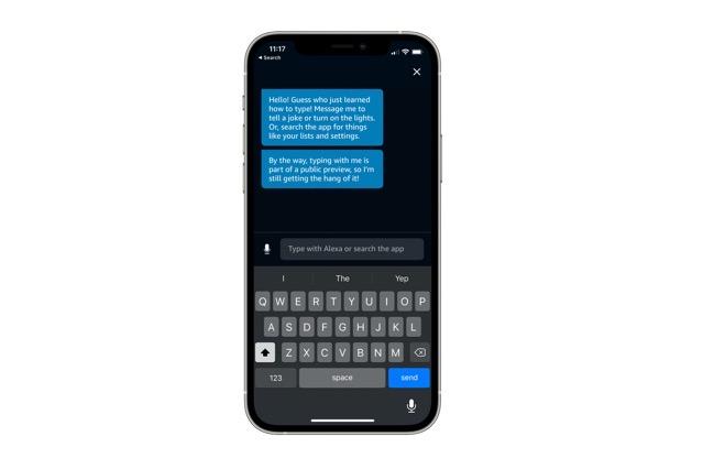 Alexa type commands