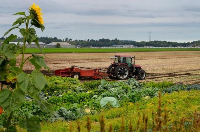 Tractor field holland marsh e1616421681578