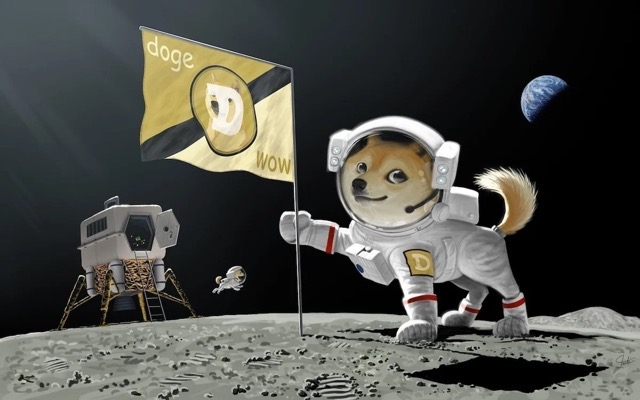 Spacex doge